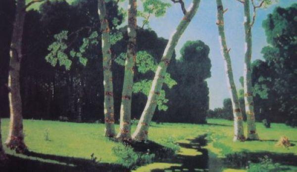 (油画《白桦树林》